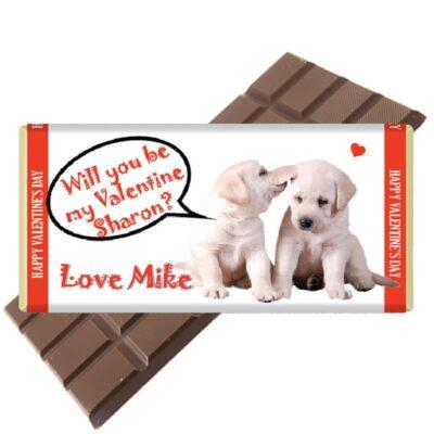 Happy valentines day puppies